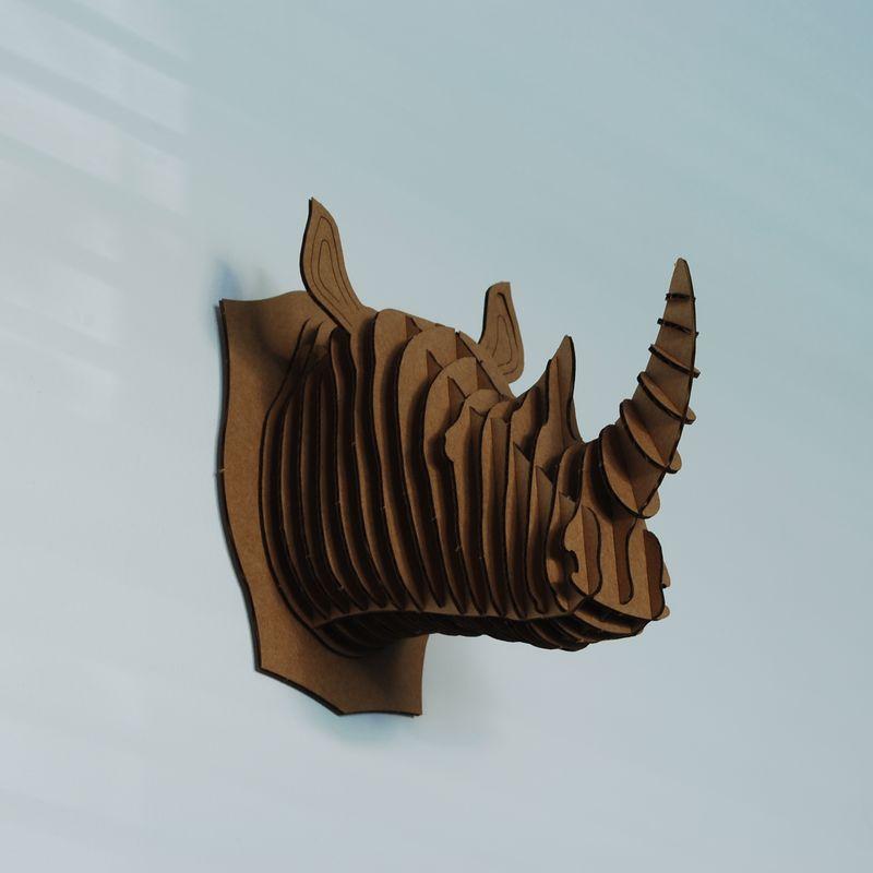 Rhino_MB01
