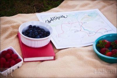 Holland_Proposal_Map