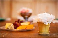 Holland_Engagement_food